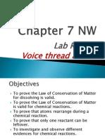 lab 7 plus voice thread