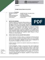 Informe Final Geraldine Sofia Nuñez Paucar