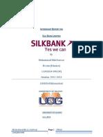 Final Silk Bank Report