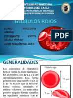 Glóbulos Rojos - Michael