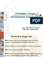 FETENDO - Hernia Difragmatica.pdf