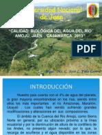 calidad de agua Cuenca Amojú