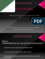 Tema IX Clase 8 Convección Libre