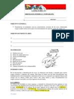 Lab1_morfologia Externa Aves (1)
