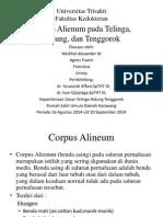 Presentation Corpus Alienum