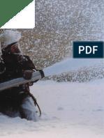 www.demsa.com.ar_manual_prevencion_incendios.pdf