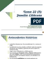 Liliáceas.pdf