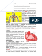 Guía de Estudio Sistemas Del Cuerpo Humano