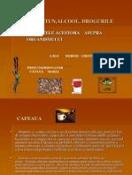 CAFEA,TUTUN,ALCOOL,DROGURI.ppt