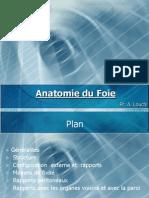 anatomie foie