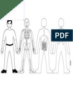 Human Body Systems-bwdoit