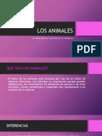 LOS ANIMALES angela.pptx