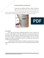 Resume Patofisiologi Pulpa Gigi