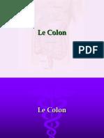 le colon