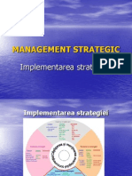 MS P6 Implementarea Strategiei