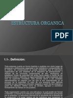 Estructura Organica, Power Point