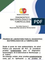 DIAGN+ôSTICO BACTERIOL+ôGICO DE LA TB 2010.ppt
