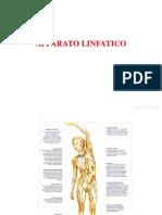 4. Sistema Linfatico