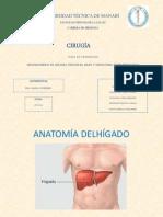 Traumatismo de Hígado, Páncreas, Bazo y Hematoma Retroperitoneal