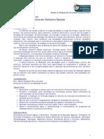 Doc Apresentacao MCCE 09