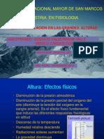 CIRCULACION EN LA  ALTURA ( Gustavo Valderrama).pptx