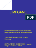 LIMFOAME (1)