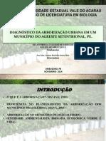 Arborização João Alfredo