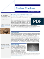 Curlew Trackers Newsletter No 3 Nov 2014