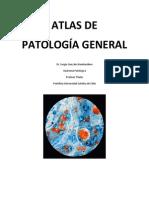 Atlas de Pato PUC