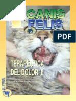 Veterinaria Terapeutica Del Dolor