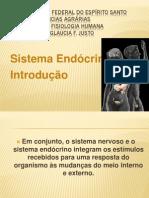 Sistema Endócrino _introdução