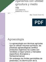 Biocontroladores y Biofertilizantes