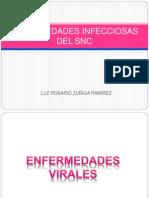 Enfermedades Infecciosas Del Snc