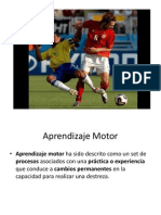 Aprendizaje Motor 2014
