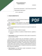 219395503-Direito-Administrativo