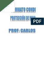 Formato Condicional-Proteccion de Hojas