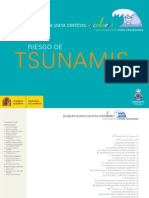 Riesgo de Tsunamis