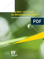 Étude Data EY (2)