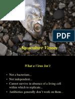 Parasit Dan Penyakit Ikan Virus