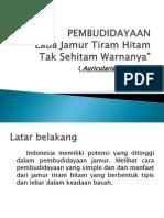 Presentasi PMW 151114