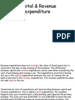Capital & Revenue Expenditure (1)
