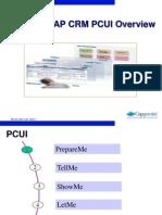 CRM PCUI Technology