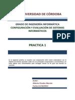 PeralesMarronAlbertoP1.pdf