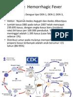 Dengue  Hemorrhagic Fever.ppt