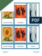 AF-27a_O_Keeffe_Art_Cards.pdf