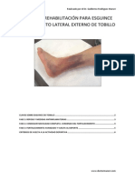 tratamiento LPAA TOBILLO