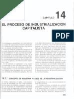 El proceso de industrialización capitalista