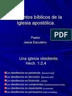 Elementos bíblicos de la Iglesia apostólica