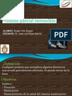 SEMINARIO PPR.pdf