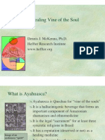 Ayahuasca- Healing Vine of the Soul